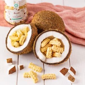 Petit Palité Coco – Biscoito com Coco sem Açúcar I 100g