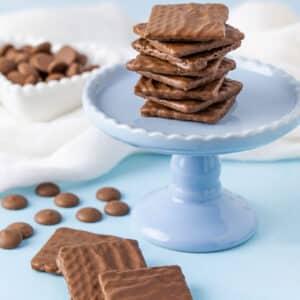 Quadratine – Lâmina de Wafer Coberta com Chocolate I 160g